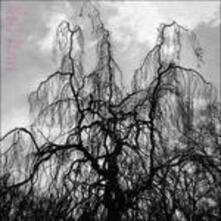 Never Were the Way She Was - Vinile LP di Colin Stetson,Sarah Neufeld