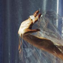 Angels on the Slope - Vinile LP di Lisel