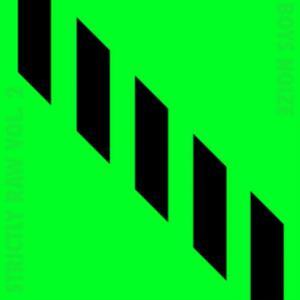 Boys Noize Presents Strictly Raw vol.2 - Vinile LP di Boys Noize