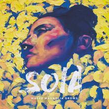 Where Magnolia Grows - Vinile LP di Soia