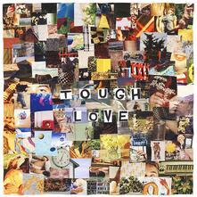 Tough Love - Vinile LP di Erin Anne