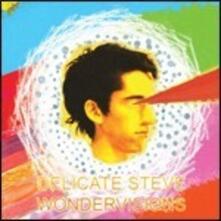 Wondervisions - Vinile LP di Delicate Steve