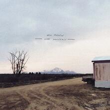 Wire Mountain (Coloured Vinyl) - Vinile LP di Will Johnson