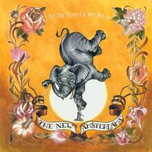 At the Foot of My Rival - CD Audio di New Amsterdams