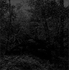 Black Oni - CD Audio di Guapo