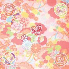 Five Roses (Digipack) - CD Audio di Miracle Fortress