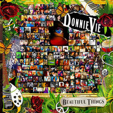 Beautiful Things - CD Audio di Donnie Vie