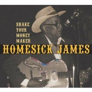 Shake Your Money Maker - CD Audio di Homesick James