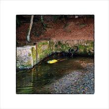 Totem - CD Audio di Franck Vigroux