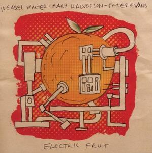 Electric Fruit - CD Audio di Mary Halvorson,Peter Evans,Weasel Walter