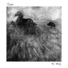 Family - Vinile LP di Timber