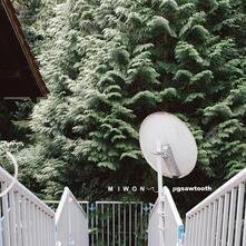 Jigsawtooth - Vinile LP di Miwon