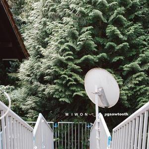 Jigsawtooth - CD Audio di Miwon