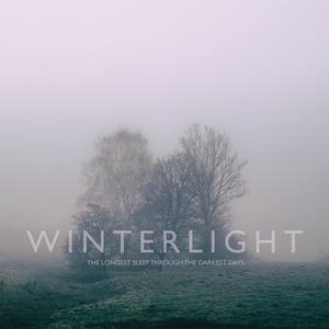 Longest Sleep Through the Darkest Days - CD Audio di Winterlight