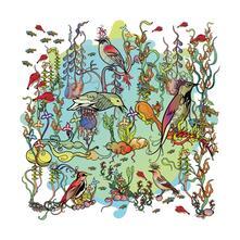 The Dreamers. Gentle Side - Vinile LP di John Zorn