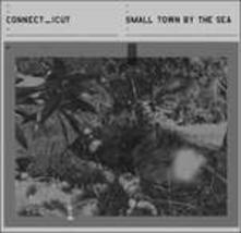 Small Town By the Sea - Vinile LP di Connect_icut