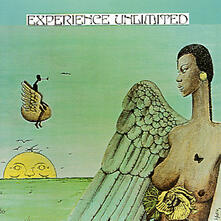 Free Yourself - Vinile LP di Experience Unlimited