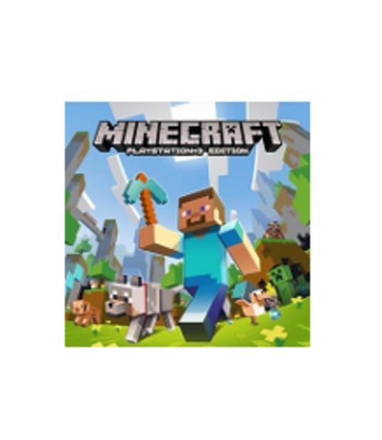 Sony Minecraft PS3 PlayStation 3 Basic