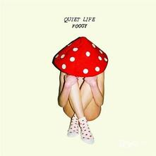 Foggy - CD Audio di Quiet Life