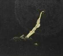 Totem (Digipack) - CD Audio di White Suns