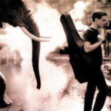 On a Day Like Today - CD Audio di Bryan Adams