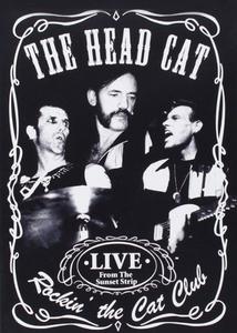 Film Head Cat. Rockin The Cat Club