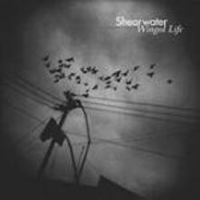 Winged Life - Vinile LP di Shearwater