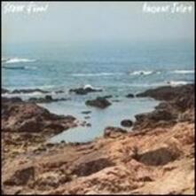Ancient Jules - Vinile LP di Steve Gunn