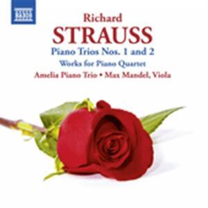 Trii con pianoforte - Brani per quartetto con pianoforte - CD Audio di Richard Strauss