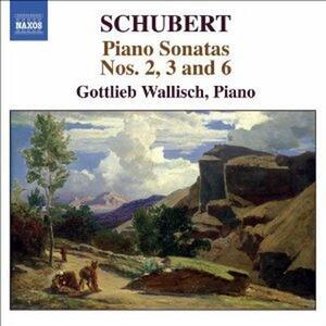 Sonate per pianoforte n.2, n.3, n.6 - CD Audio di Franz Schubert,Gottlieb Wallisch