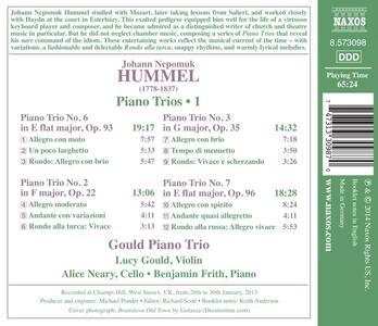 Trii per archi e pianoforte - CD Audio di Johann Nepomuk Hummel - 2