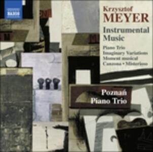 Musica Strumentale - Instrumental Music - CD Audio di Krzysztof Meyer