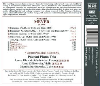 Musica Strumentale - Instrumental Music - CD Audio di Krzysztof Meyer - 2