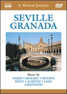 A Musical Journey. Seville, Granada - DVD