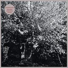 Parallel Universe Blues (Coloured Vinyl) - Vinile LP di Papercuts