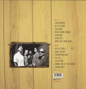 Suburban Teenage - Vinile LP di Strung Out - 2