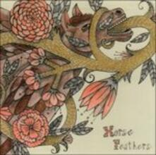 Words Are Dead - Vinile LP di Horse Feathers