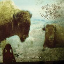 Breaks in the Sun - Vinile LP di Weinland