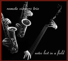 Notes Lost in a Filed - CD Audio di Remote Viewers Trio