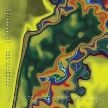 A Fossil Beings to Bray. Bleep (Coloured Vinyl) - Vinile LP di Hiro Kone