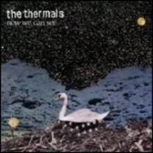 Now We Can See - Vinile LP di Thermals