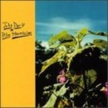 Blue Mountains - Vinile LP di John Davis