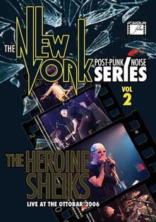 New York Post Punk-Noise Series Volume 2 - DVD