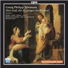 Opere sacre - CD Audio di Hermann Max,Das Kleine Konzert