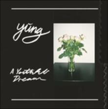 A Youthful Dream - Vinile LP di Yung