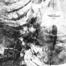 Terrestreality - Vinile LP di Innercity