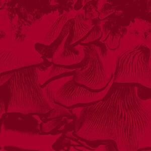 Live at Elastico - Vinile LP di Maurizio Abate