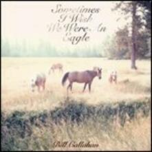 Sometimes I Wish We Were an Eagle - Vinile LP di Bill Callahan