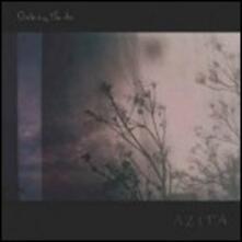 Disturbing the Air - Vinile LP di Azita