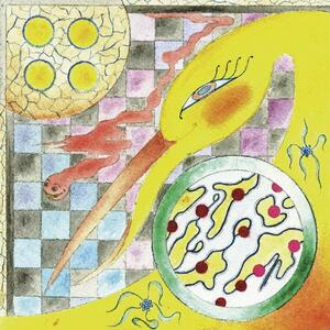 Perfume - Vinile LP di Wand